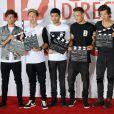 "Le groupe One Direction (Harry Styles, Liam Payne, Louis Tomlinson, Niall Horan et Zayn Malik) assiste au photocall du documentaire ""This Is Us"" aux studios Big Sky a Londres. Le 19 aout 2013"