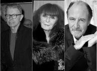 David Bowie, Sonia Rykiel, Michel Delpech... Ils nous ont quittés en 2016