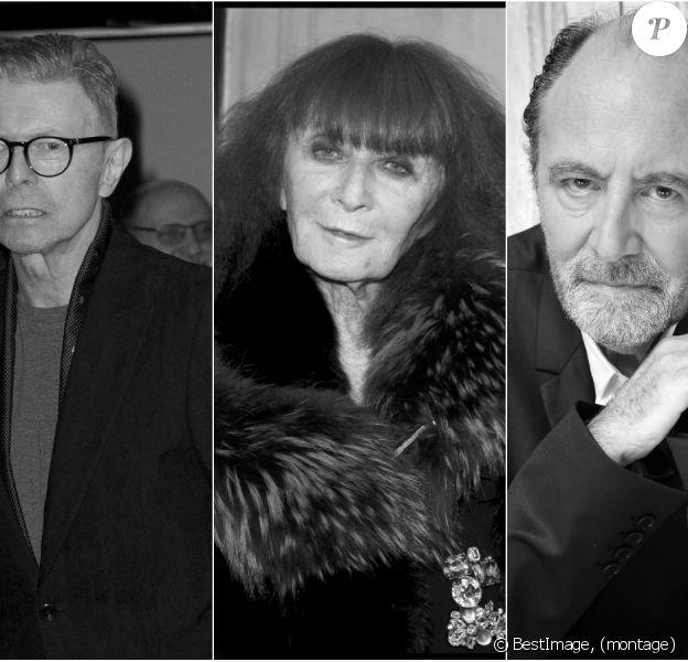 David Bowie, Sonia Rykiel et Michel Delpech nous ont quittés en 2016