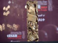 César 2017, toutes les nominations : Lily-Rose Depp, Elle, Marion Cotillard...