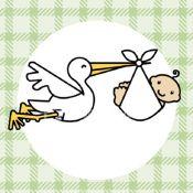 Bébés de 2009 : Préparez les cadeaux, les cigognes ne sauront plus où donner du... bec !