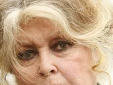 Brigitte Bardot vous appelle à l'aide !