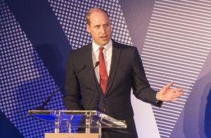 Lady Di : Les princes William et Harry rendent un hommage ému à leur mère