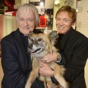 Dave en deuil : Le chanteur a perdu sa fidèle compagne...