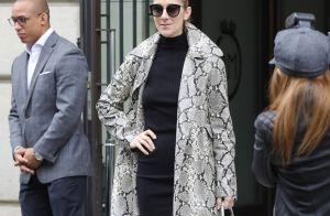 Céline Dion : Look sauvage et sexy pour la nouvelle reine de la mode