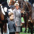 Lady Di avec les princes William et Harry à Badminton en avril 1991.