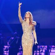 Céline Dion : Ses mots émus après la fusillade de Las Vegas...