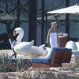 Charlize Theron profite d'une belle journée ensoleillée avec ses enfants Jackson et August Theron ainsi que sa mère Gerda pour Thanksgiving à Cabo San Lucas au Mexique, le 23 novembre 2017