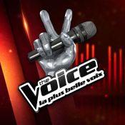 The Voice 7 : Une première voix dévoilée, les coachs sous le charme