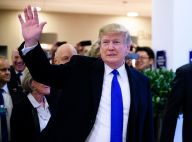 Donald Trump veut un Van Gogh, il aura des chiottes en or !