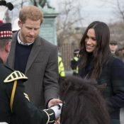 Le Prince Harry : Un âne manque de le mordre, Meghan Markle hilare !