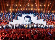 Les Enfoirés 2018 en danger ? La crise à TF1 pourrait avoir un grave impact...