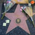 Illustration des hommages sur l'étoile de Stan Lee sur le Walk Of Fame à Hollywood. Le 12 novembre 2018 Hollywood, CA - Flowers placed on Stan Lee's Star on the Hollywood Walk of Fame after his passing at the age of 95 in Hollywood, California.12/11/2018 - Hollywood