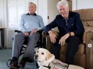 Mort de George H.W. Bush : La triste photo de son chien, loyal jusqu'au bout