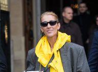 Céline Dion : Son nouveau look XXL onéreux...