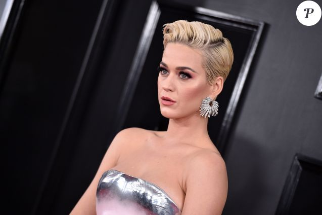 61e édition des GRAMMY Awards à Los Angeles, le 10 février 2019.