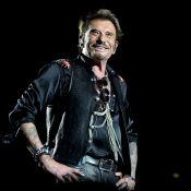 Héritage de Johnny Hallyday : La décision tant attendue tombera le...
