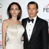 """Brad Pitt et Angelina Jolie officiellement """"célibataires"""""""