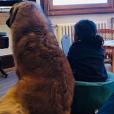 Abbie, la fille de Faustine Bollaert et Maxime Chattam, devant la télé avec leur chien - Instagram, 7 avril 2019