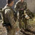 Le prince Harry lors d'un exercice d'entraînement de commando avec l'armée australienne en Australie, à Sydney en 2015.