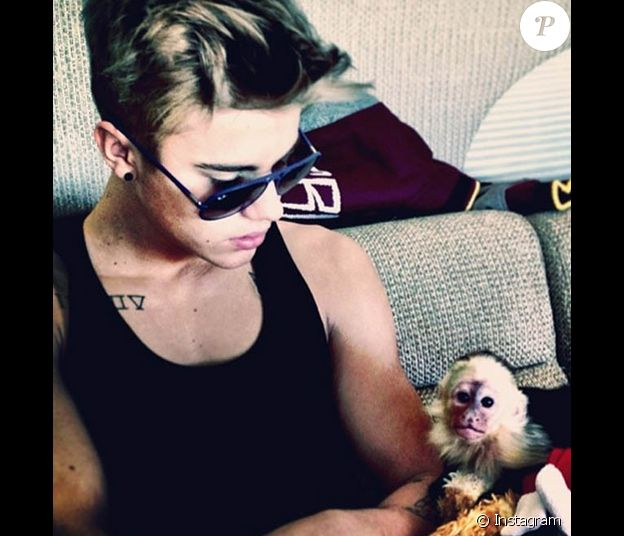 Justin Bieber pose avec son petit capucin, Mally, reçu en cadeau pour ses 19 ans. Photo publiée sur Instagram en mars 2013.