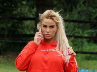 Katie Price volée et piratée par son ex : la police intervient