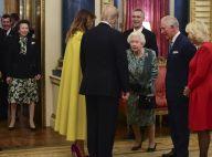 Elizabeth II réprimande sa fille Anne devant Trump : le quiproquo enfin levé