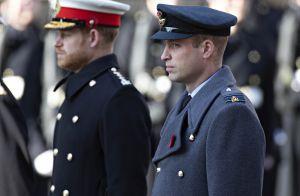 Princesse Diana : Trois top models pour son fils William, un jour d'anniversaire