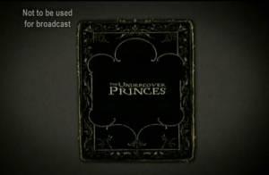 Andrea Casiraghi ? Amedeo de Belgique ? Felix de Luxembourg ? Attention les filles : TF1 va vous présenter... de vrais Princes !