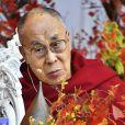 Le Dalai Lama participe au 'One - We are One Family' dans la salle de concert en plein air de Hibiya à Tokyo le 17 novembre 2018.