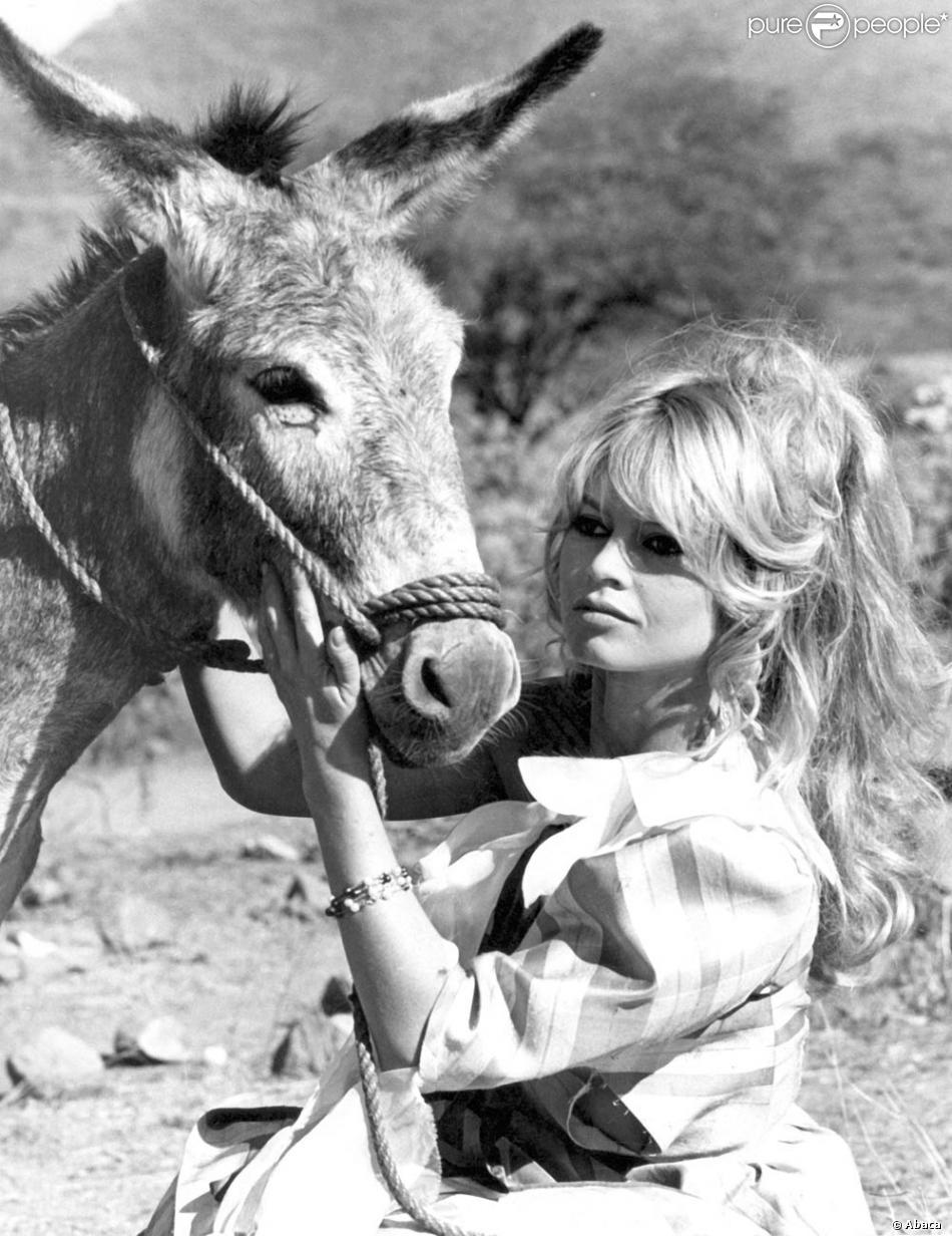 Brigitte Bardot BB en TV