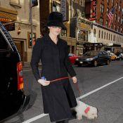 Catherine Zeta-Jones : Elle retombe à zéro... question look !