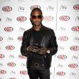 Usher, qui célèbre sur ces clichés l'ouverture d'un nightclub à Las Vegas le 8 janvier 2010, a recruté Noémie Lenoir pour figurer dans son dernier clip.