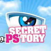 Endemol fait fermer le site parodique et politique de Secret Story !