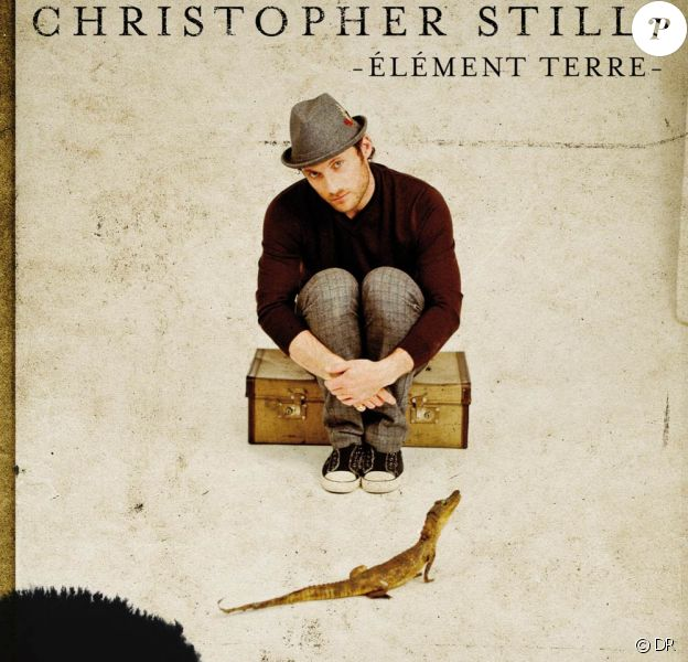 Chris Stills prépare un nouvel album, Double vie, attendu pour 2011, dont il dévoilera un premier extrait dès octobre 2010 : Elément terre.