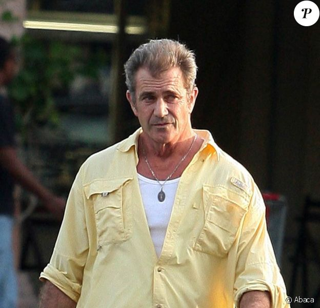 Mel Gibson ne tournera pas dans Very Bad Trip 2.