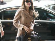 Angelina Jolie et Eva Mendes ont un nouveau compagnon au bras...