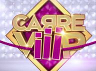 Carré Viiip : Le CSA convoque TF1 et Endemol... Beaucoup de bruit pour rien ?