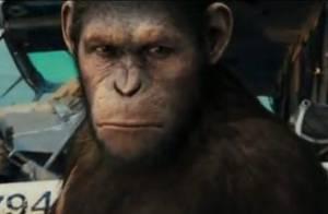 La Planète des Singes : un nouvel extrait vraiment sans pitié pour les humains