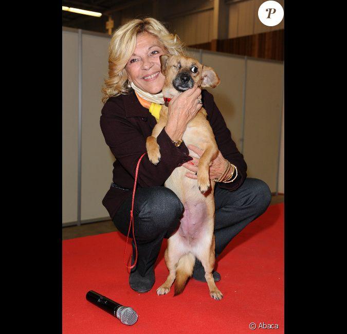 Nicoletta assiste au no l des animaux au parc des expositions de la porte de versailles paris - Porte de versailles animaux ...