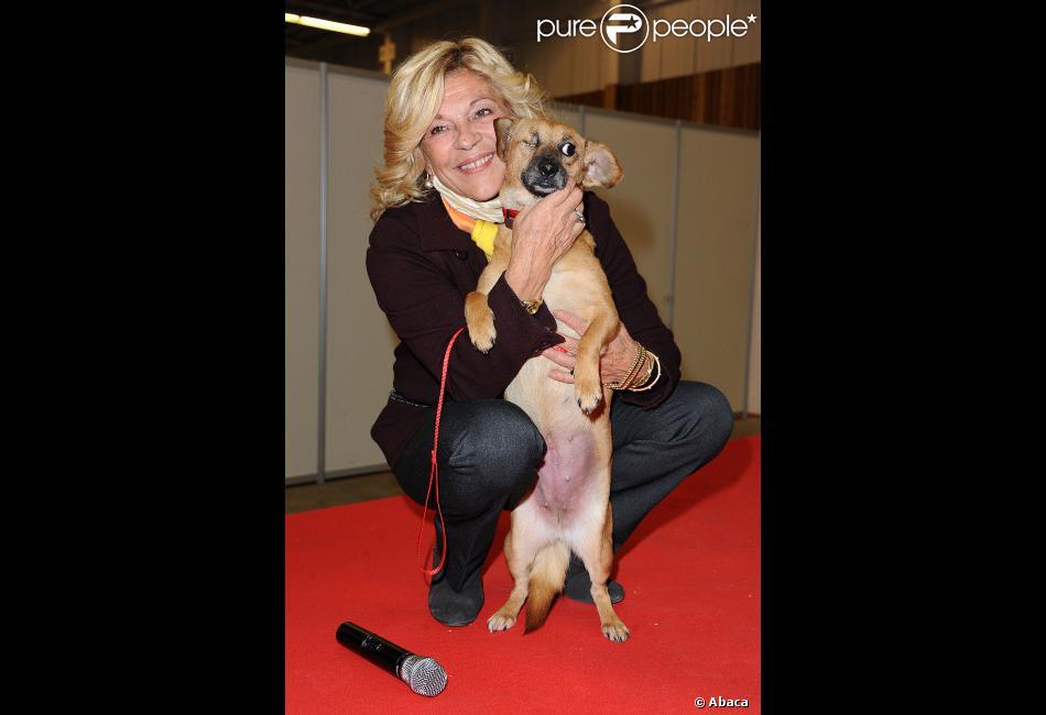 Nicoletta assiste au no l des animaux au parc des expositions de la porte de versailles paris - Animaux porte de versailles ...