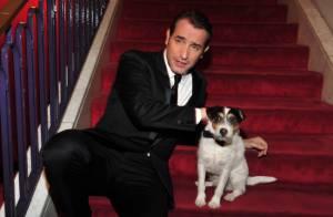 Uggie, le chien de The Artist : L'autre star qui détrônerait Jean Dujardin ?