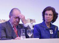 Juan Carlos Ier : Una Historia Real, chanson punk de toutes les insultes, punie