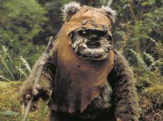 Star Wars : L'acteur derrière l'Ewok accusé d'exhibitionnisme
