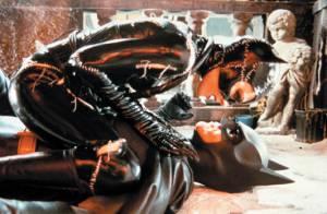 Il y a 20 ans  : Michelle Pfeiffer était Catwoman et menait la vie dure à Batman