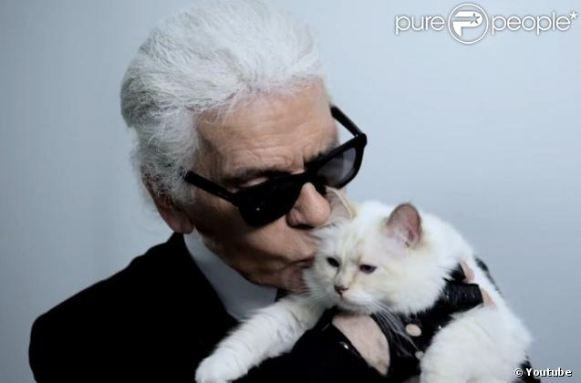 karl lagerfeld sa nouvelle muse choupette est un chat g t et mani r. Black Bedroom Furniture Sets. Home Design Ideas