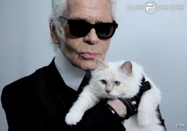 karl lagerfeld et son chat choupette posent pour net a porter. Black Bedroom Furniture Sets. Home Design Ideas
