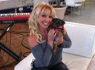 Britney Spears échange des messages sur Twitter avec sa chienne !