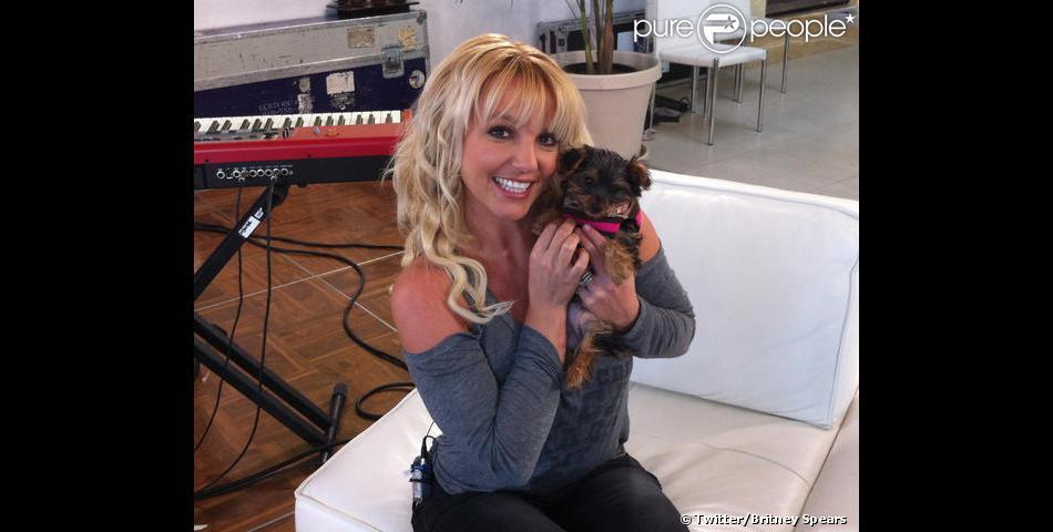 Britney Spears présente sa chienne Hannah