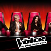 The Voice : Le grand retour d'Al.Hy, Ruby, Amalya et les finalistes !